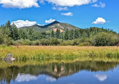Temperate Broadleaf and Mixed Forests - Bed & breakfasts & inns of Colorado Association