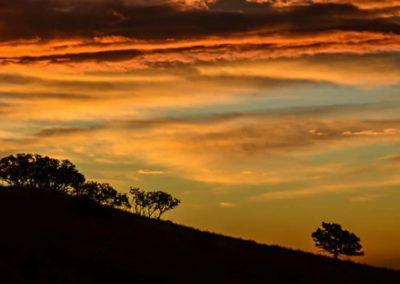 Sunsets - Bed & breakfasts & inns of Colorado Association